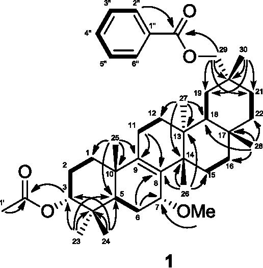 Figure 4 From Three New Multiflorane Type Triterpenes From Pumpkin