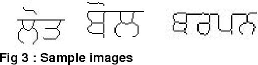 Fig 3 : Sample images