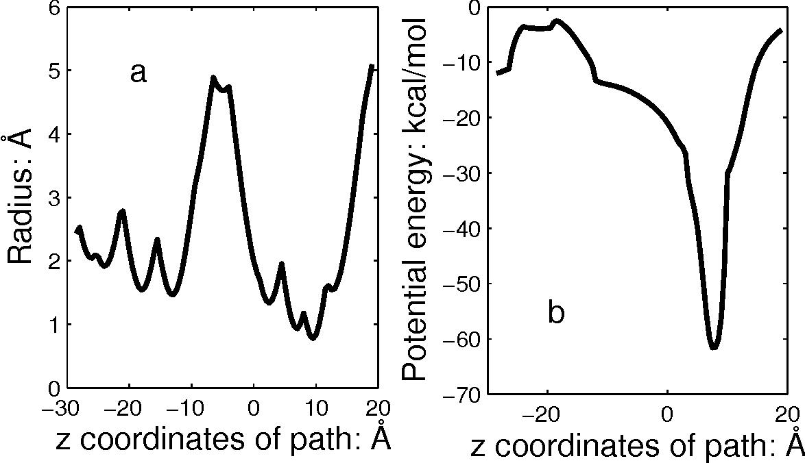 Figure 1: (a) The radius profile for the KcsA potassium channel. (b) The potential profile.