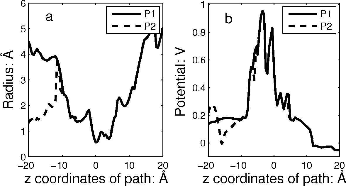 Figure 3: (a) The radius profiles for the two paths P1 and P2 in 1OTS. (b) The potential profiles.