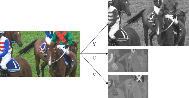 Figure 4 for Transform Network Architectures for Deep Learning based End-to-End Image/Video Coding in Subsampled Color Spaces