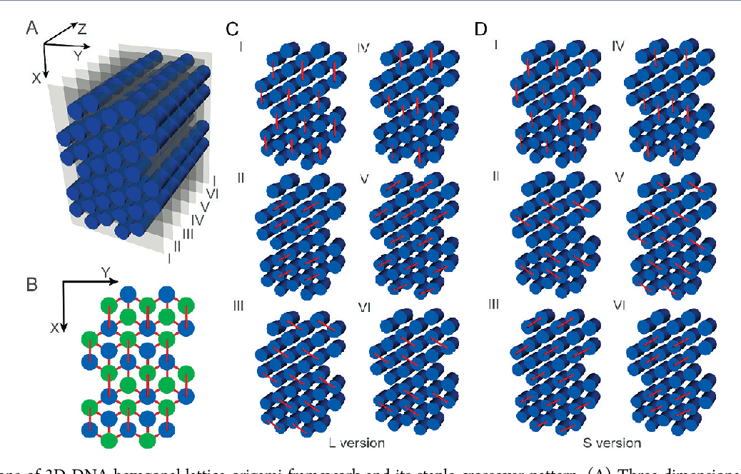 Figure 1 from Multilayer DNA origami packed on hexagonal and hybrid