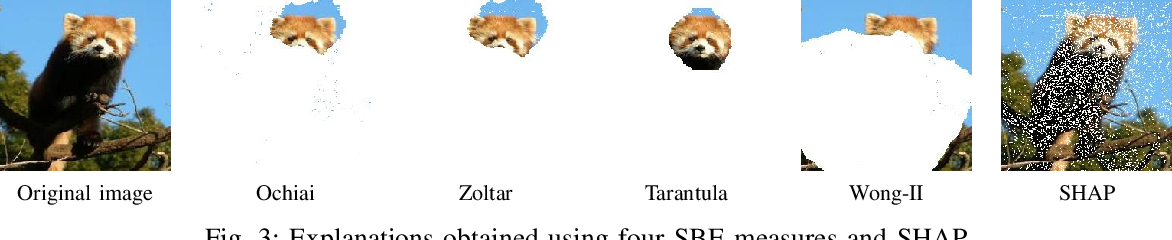Figure 3 for Explaining Deep Neural Networks Using Spectrum-Based Fault Localization