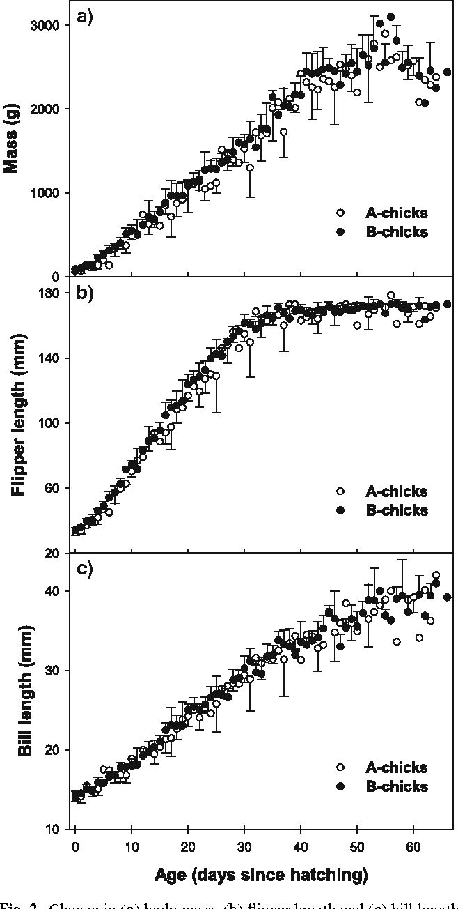 Fig. 2 Change in (a) body mass, (b) Xipper length and (c) bill length from the hatching to the Xedging age for A-chicks (N = 242 measurements) and B-chicks (N = 494 measurements) from A-, B- and ABnests. Means § SD for ages with more than two measurements and only means for ages with one or two measurements