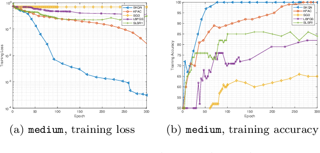 Figure 4 for Structured Stochastic Quasi-Newton Methods for Large-Scale Optimization Problems