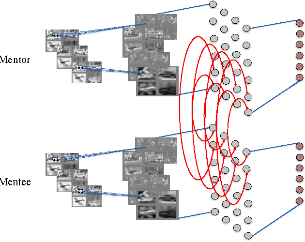 Figure 1 for Diving deeper into mentee networks