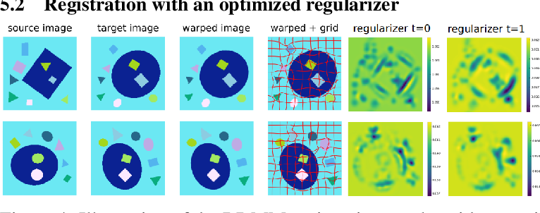 Figure 4 for Region-specific Diffeomorphic Metric Mapping