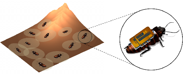 Fig. 1. A physical environment with a swarm of biobotic (cyborg insect) agents and their corresponding local sensing neighborhoods.