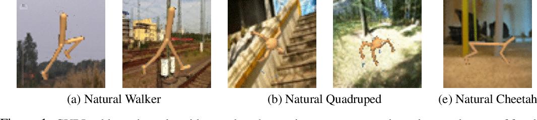 Figure 1 for Contrastive Variational Model-Based Reinforcement Learning for Complex Observations