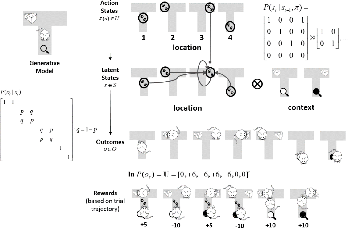 Figure 1 for Active inference, Bayesian optimal design, and expected utility