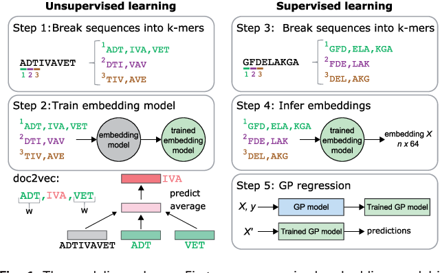 Figure 1 from Learned protein embeddings for machine learning