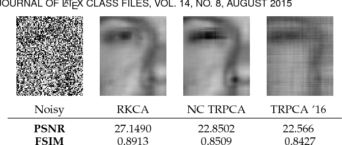 Figure 4 for Robust Kronecker Component Analysis