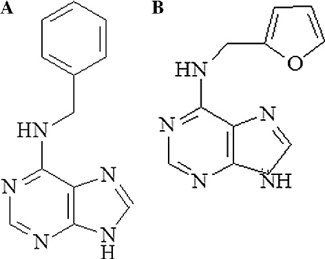 Fig. 1 Structure of a N6-benzyladenine and b kinetin