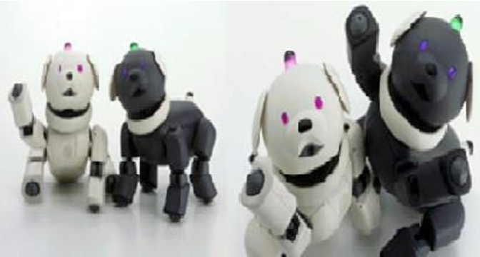 PDF] A PET-TYPE ROBOT AIBO-ASSISTED THERAPY AS A DAY CARE