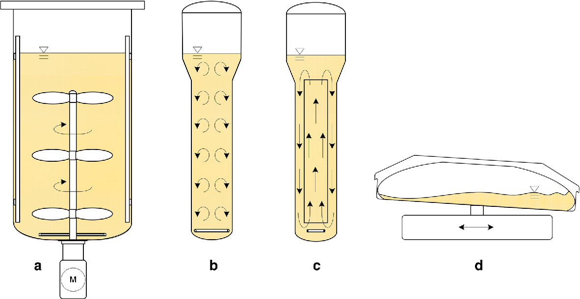 Figure 3 from Plant cell culture technology in the cosmetics and