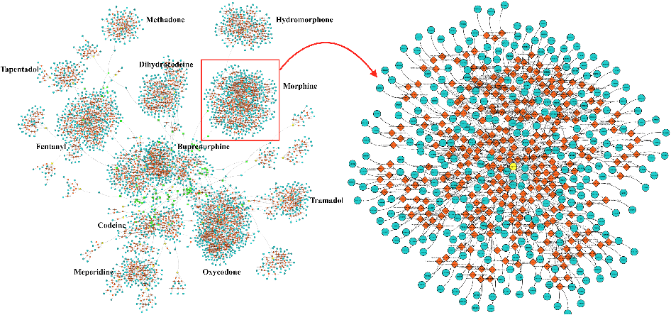 Figure 2 for A Knowledge Graph-based Approach for Exploring the U.S. Opioid Epidemic