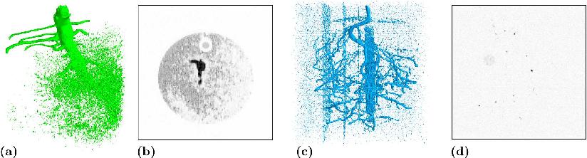 Figure 1 for 3D U-Net for Segmentation of Plant Root MRI Images in Super-Resolution