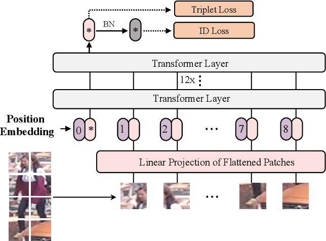 Figure 3 for TransReID: Transformer-based Object Re-Identification