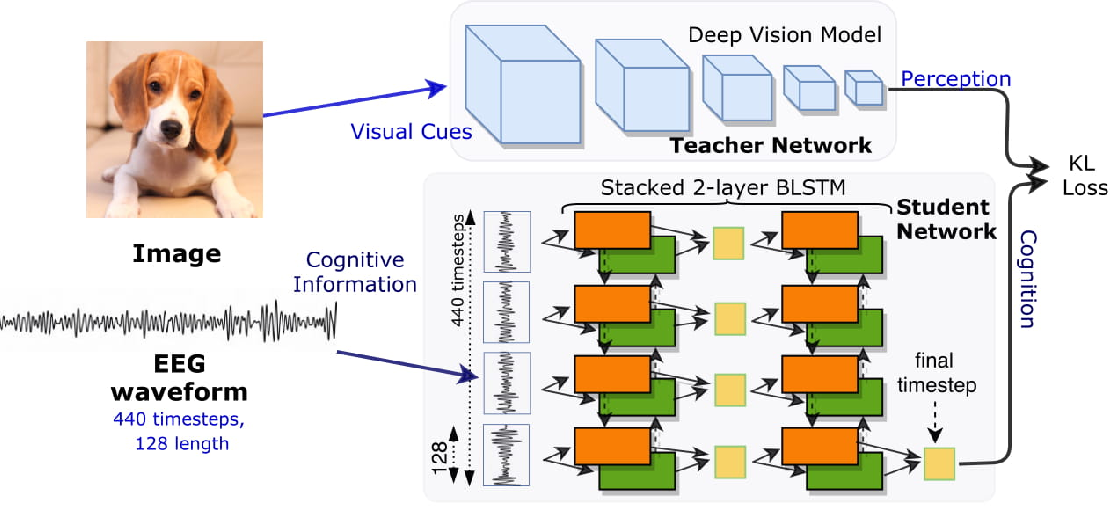 Figure 1 for Cogni-Net: Cognitive Feature Learning through Deep Visual Perception