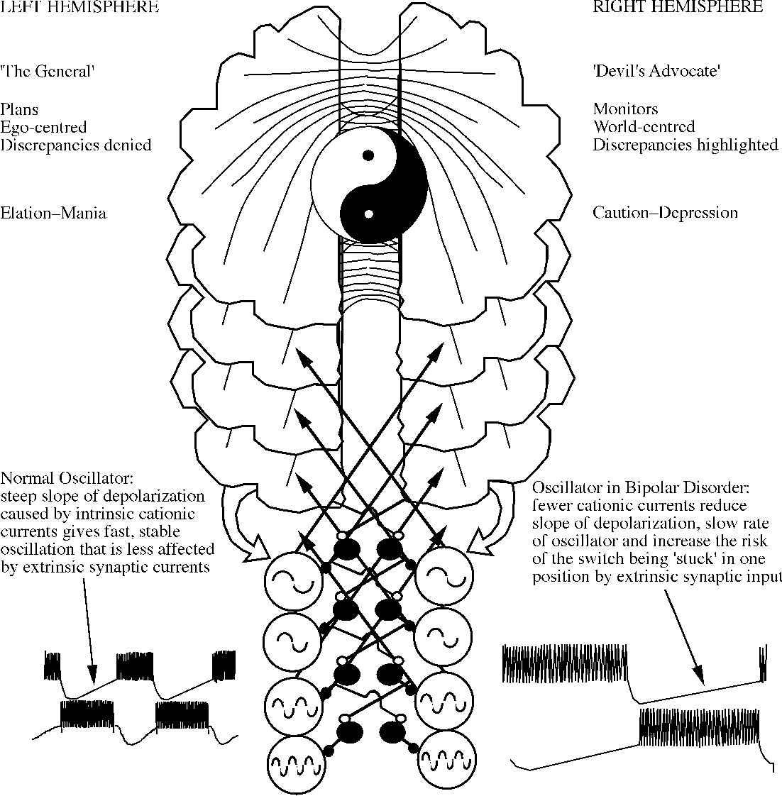 Figure 5 From A Sticky Interhemispheric Switch In Bipolar Disorder