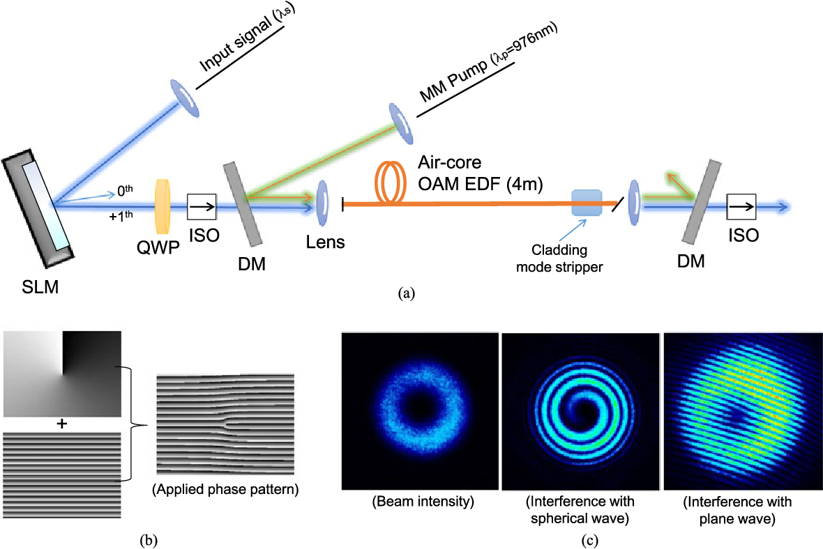 Fig. 3. (a) Schematic of the cladding-pumped OAM amplifier employing an SLM for helical phase generation, (b) applied phase pattern to generate the OAM modes with topological charge l = +1 and (c) measured CCD images of the diffracted light from the SLM panel: OAM beam intensity (left) and interference patterns with a spherical (middle) or plane reference beam (right), respectively.