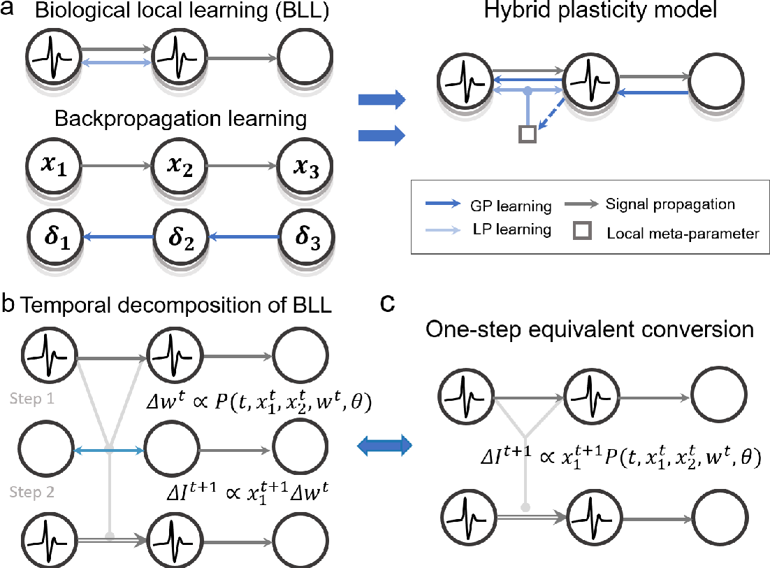 Figure 1 for Brain-inspired global-local hybrid learning towards human-like intelligence