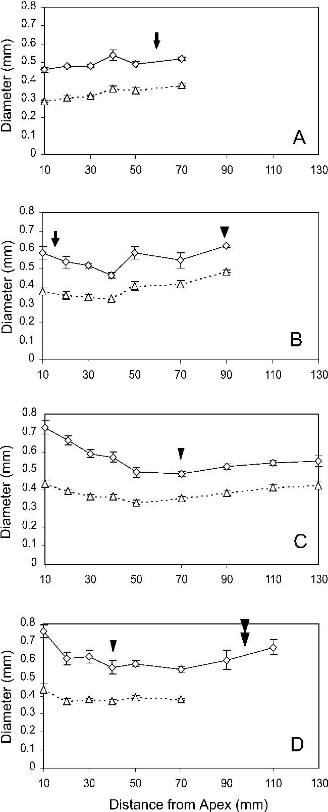 Figure 2 from Anatomy of seedling tap roots of loblolly pine (Pinus ...