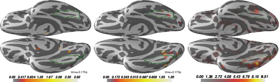 Figure 4 for Group level MEG/EEG source imaging via optimal transport: minimum Wasserstein estimates