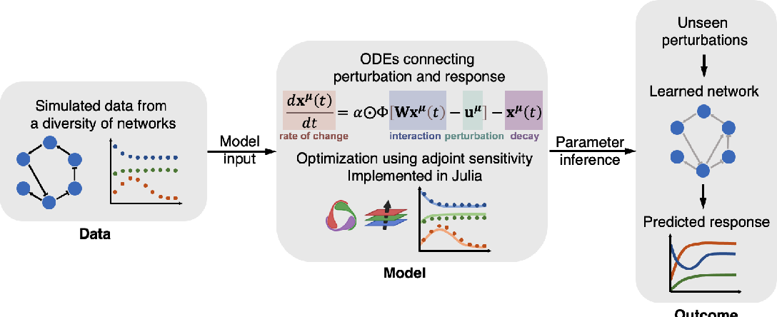 Figure 1 for Inference of cell dynamics on perturbation data using adjoint sensitivity