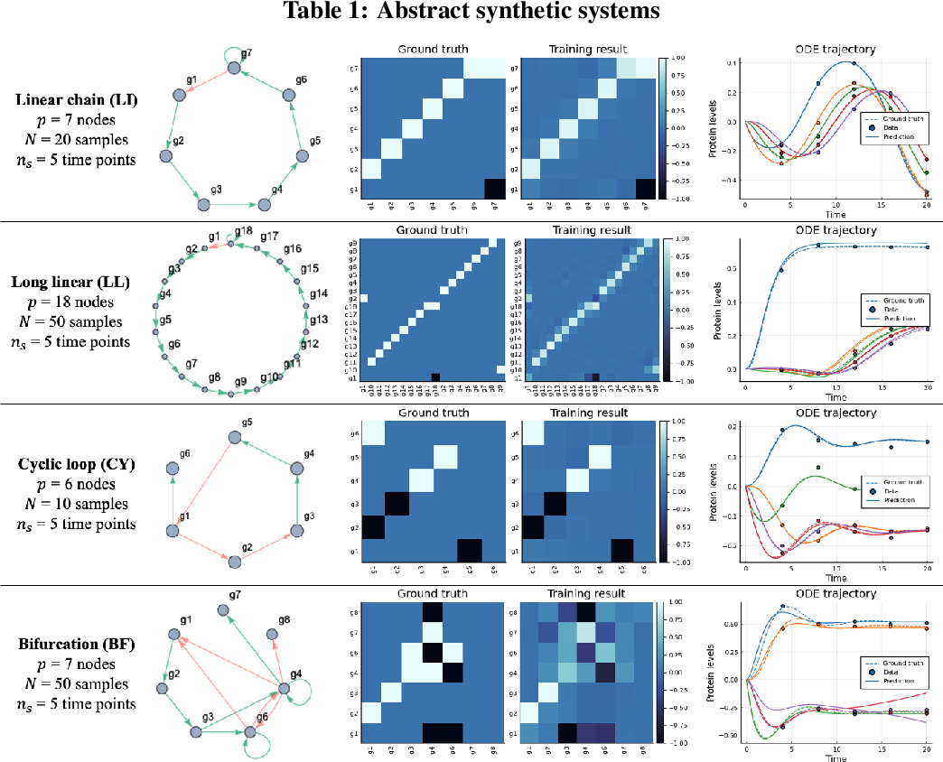 Figure 2 for Inference of cell dynamics on perturbation data using adjoint sensitivity