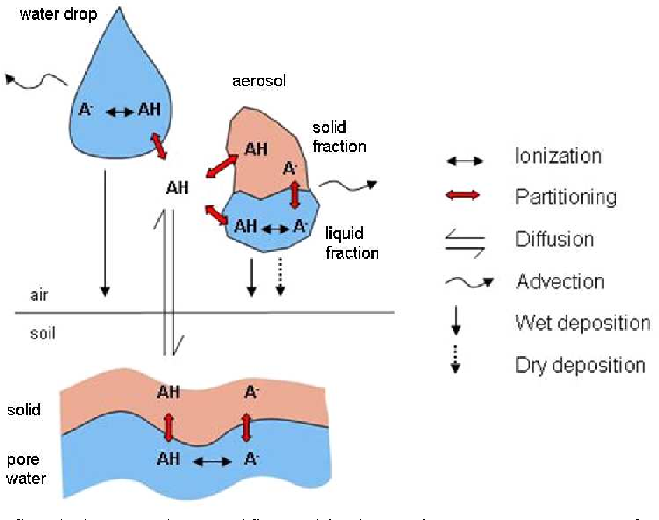 Figure 7. Speciation, species-specific partitioning and transport processes of an organic acid between soil and air as implemented in MAMI.