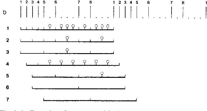 Figure 2 From A Theoretical Framework For Rhythm Perception