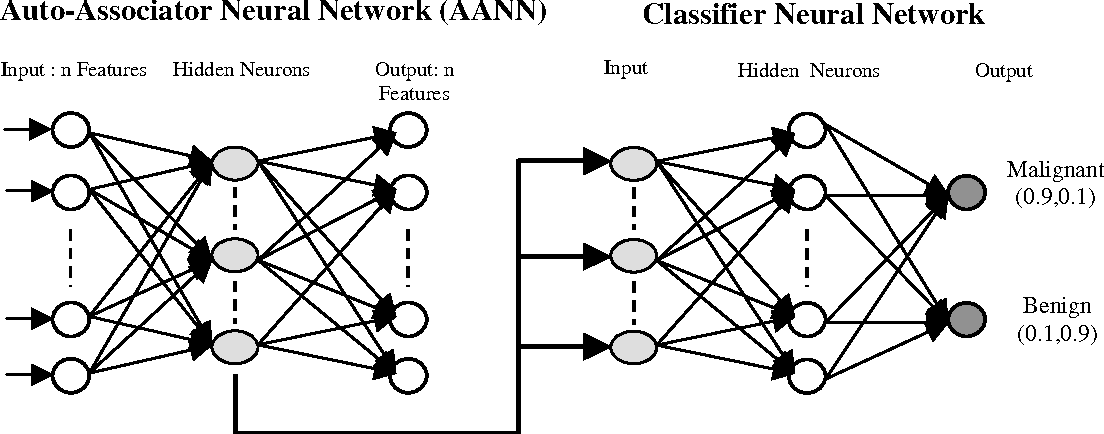 Figure 1. Architecture of Two Neural Networks.