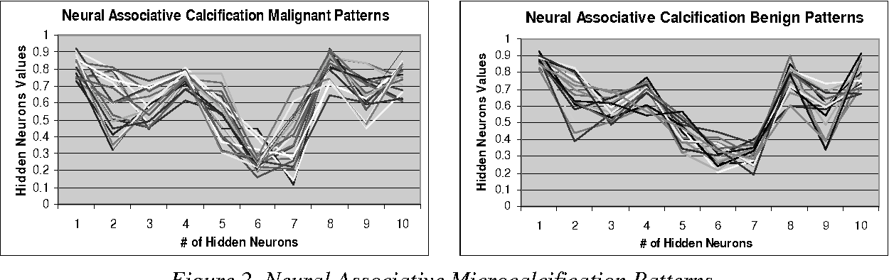 Figure 2. Neural Associative Microcalcification Patterns.