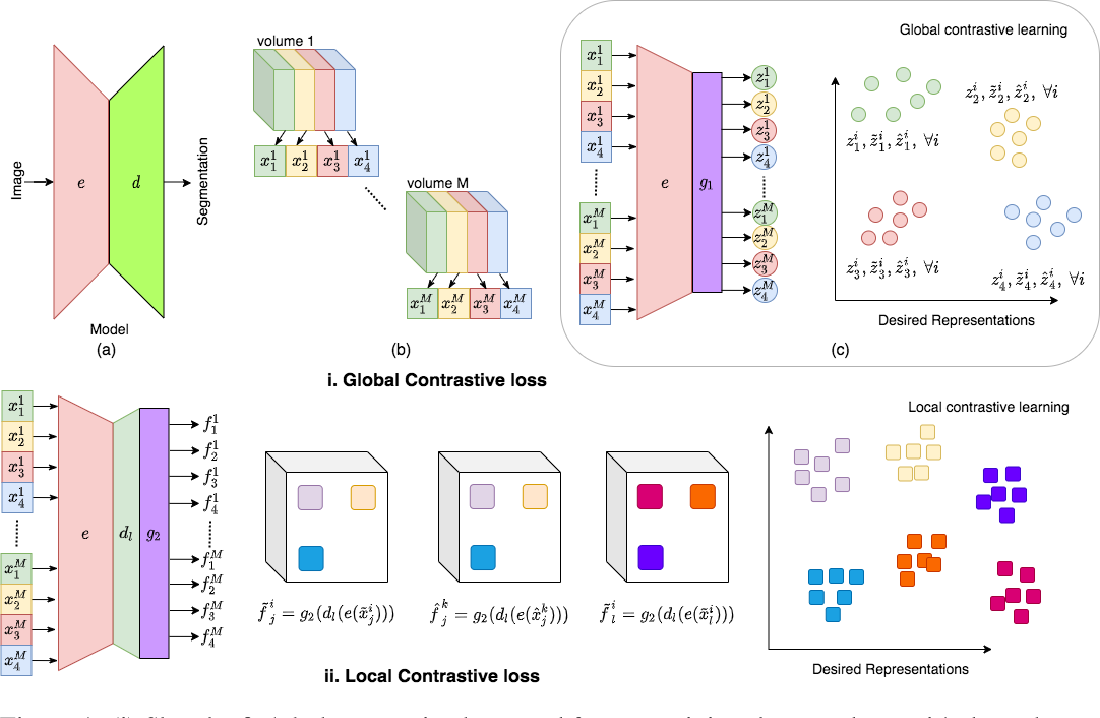 Figure 1 for Contrastive learning of global and local features for medical image segmentation with limited annotations