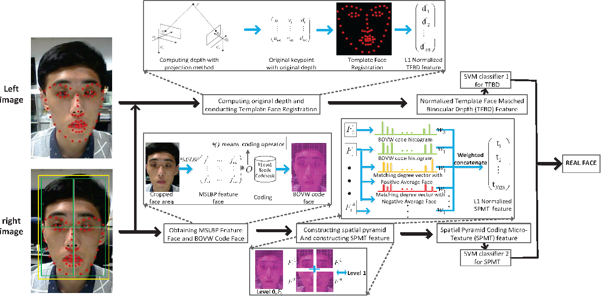 Figure 1 for Face Spoofing Detection by Fusing Binocular Depth and Spatial Pyramid Coding Micro-Texture Features