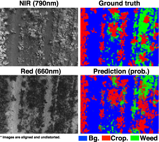 Figure 1 for weedNet: Dense Semantic Weed Classification Using Multispectral Images and MAV for Smart Farming