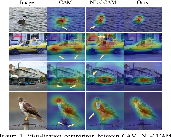 Figure 1 for Improving Weakly-supervised Object Localization via Causal Intervention