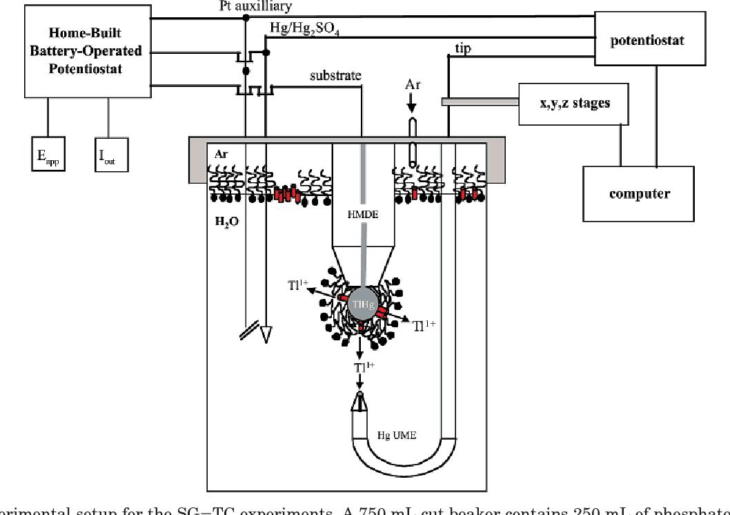 scanning electrochemical microscopy second edition bard allen j mirkin michael v