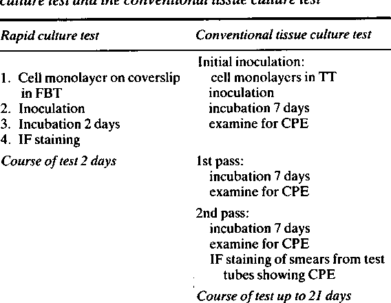 PDF] A rapid and sensitive culture test for detecting herpes