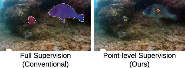 Figure 1 for Affinity LCFCN: Learning to Segment Fish with Weak Supervision