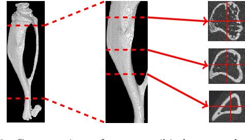 Figure 3 for ChronoMID - Cross-Modal Neural Networks for 3-D Temporal Medical Imaging Data