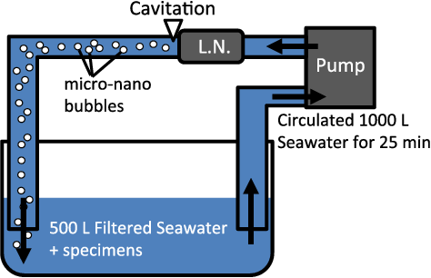 Figure 1 from Physical eradication of small planktonic