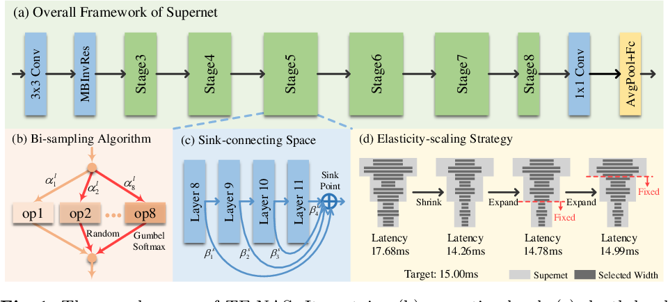 Figure 1 for TF-NAS: Rethinking Three Search Freedoms of Latency-Constrained Differentiable Neural Architecture Search