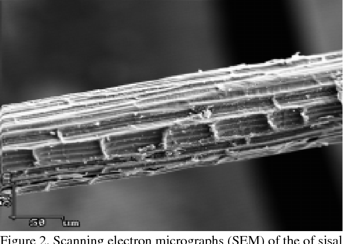 Figure 2 from A REVIEW ON SISAL FIBER REINFORCED POLYMER COMPOSITES