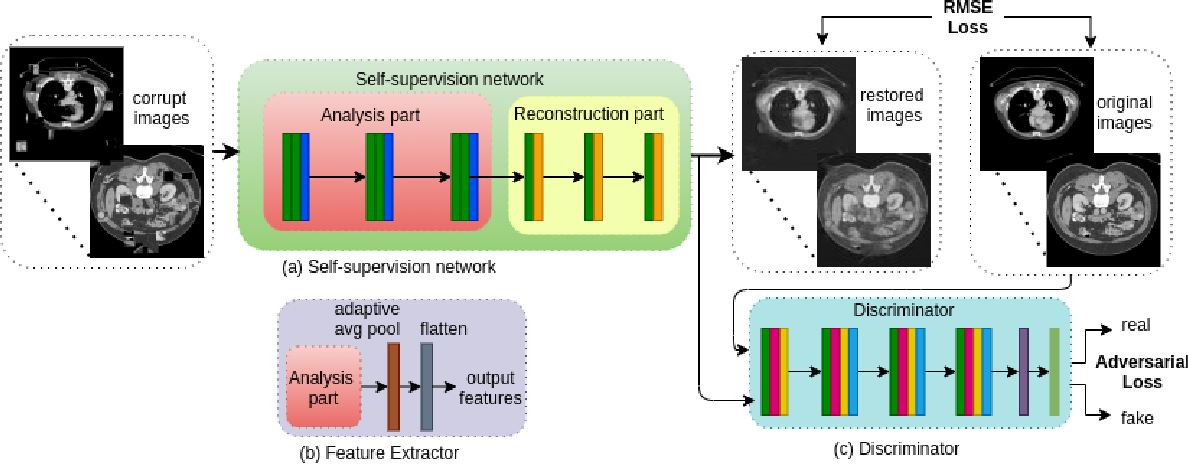 Figure 1 for Liver Fibrosis and NAS scoring from CT images using self-supervised learning and texture encoding