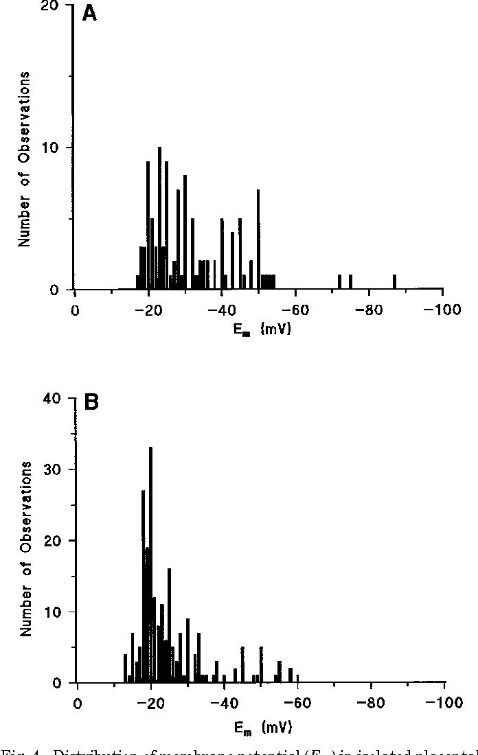 Figure 4 From Microvillous Membrane Potential E M In Villi From
