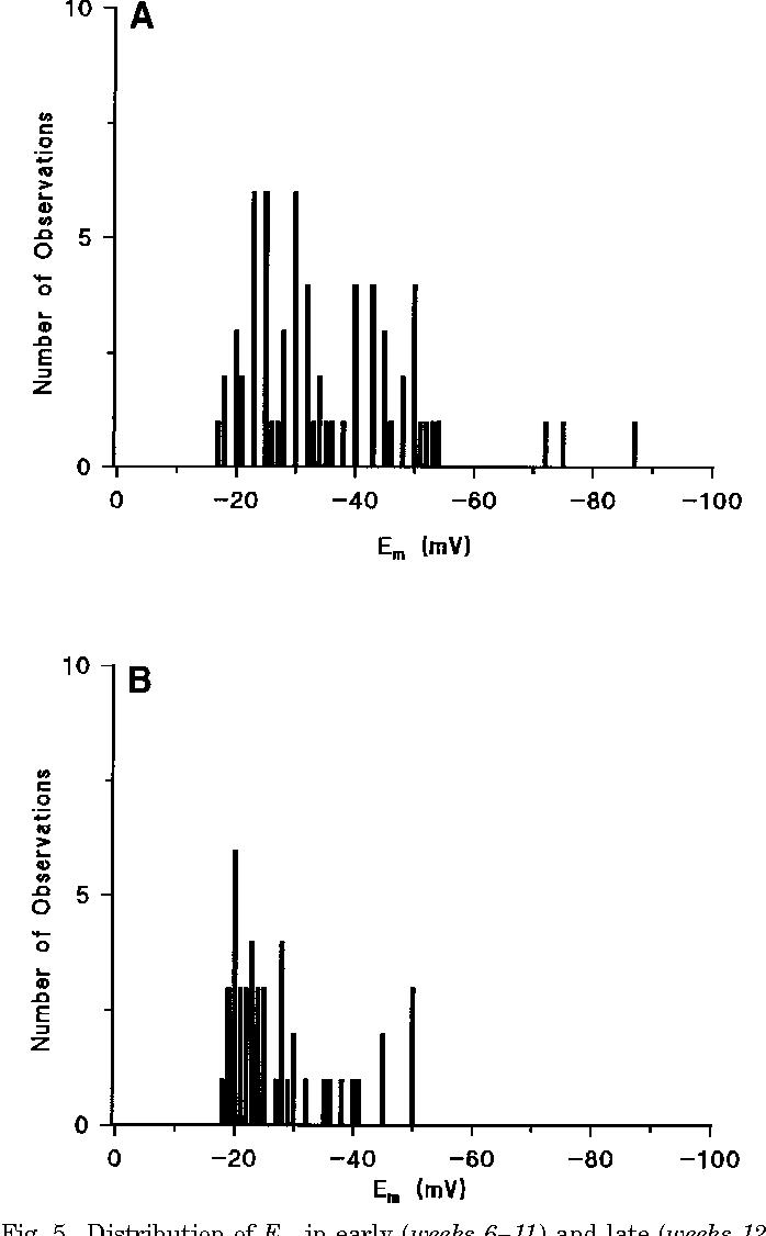 Figure 5 From Microvillous Membrane Potential E M In Villi From