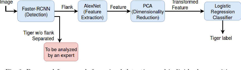 Figure 3 for Automatic Detection and Recognition of Individuals in Patterned Species