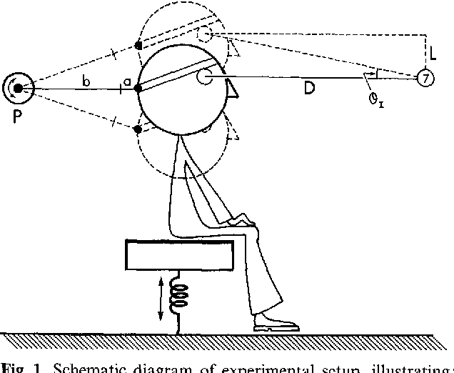 The Influence Of Target Distance On Eye Movement Responses During